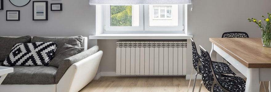 radiateur plinthe à inertie