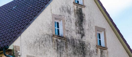 façade doit être rénovée